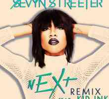 Fierce Freitag Playlist: sevyn streeter feat. Kid Ink - 'next'